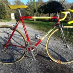 Colnago master vintage bicycles rental tuscany pisa