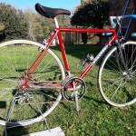 benotto vintage bicycles rental tuscany pisa