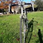 vitus vintage bicycles rental tuscany pisa