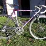 Moser vintage bicycles rental tuscany pisa