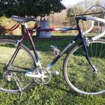ceccherini vintage bicycles rental tuscany pisa